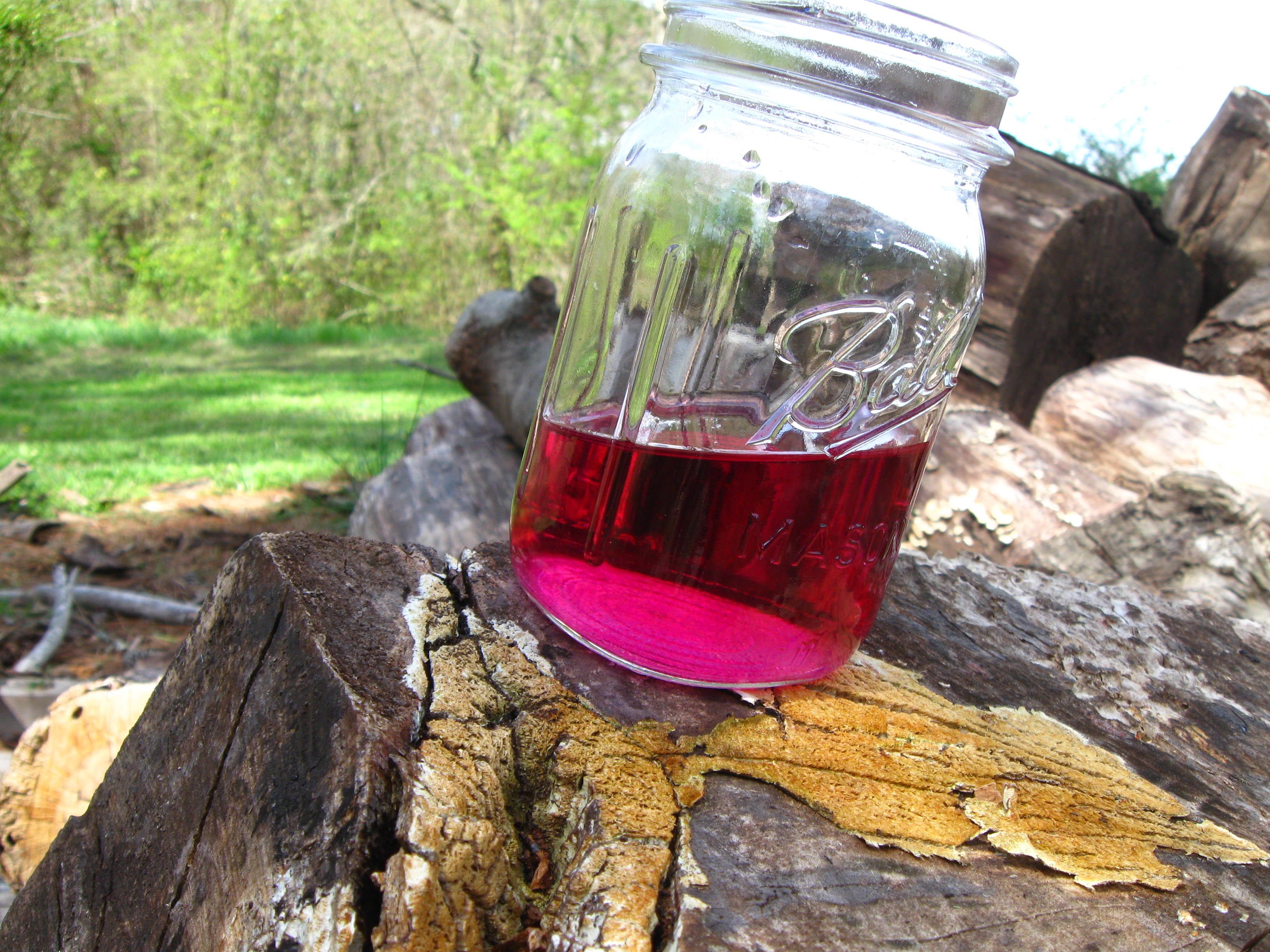 An infused vinegar made with sweet violets is a stunning magenta colored potion.