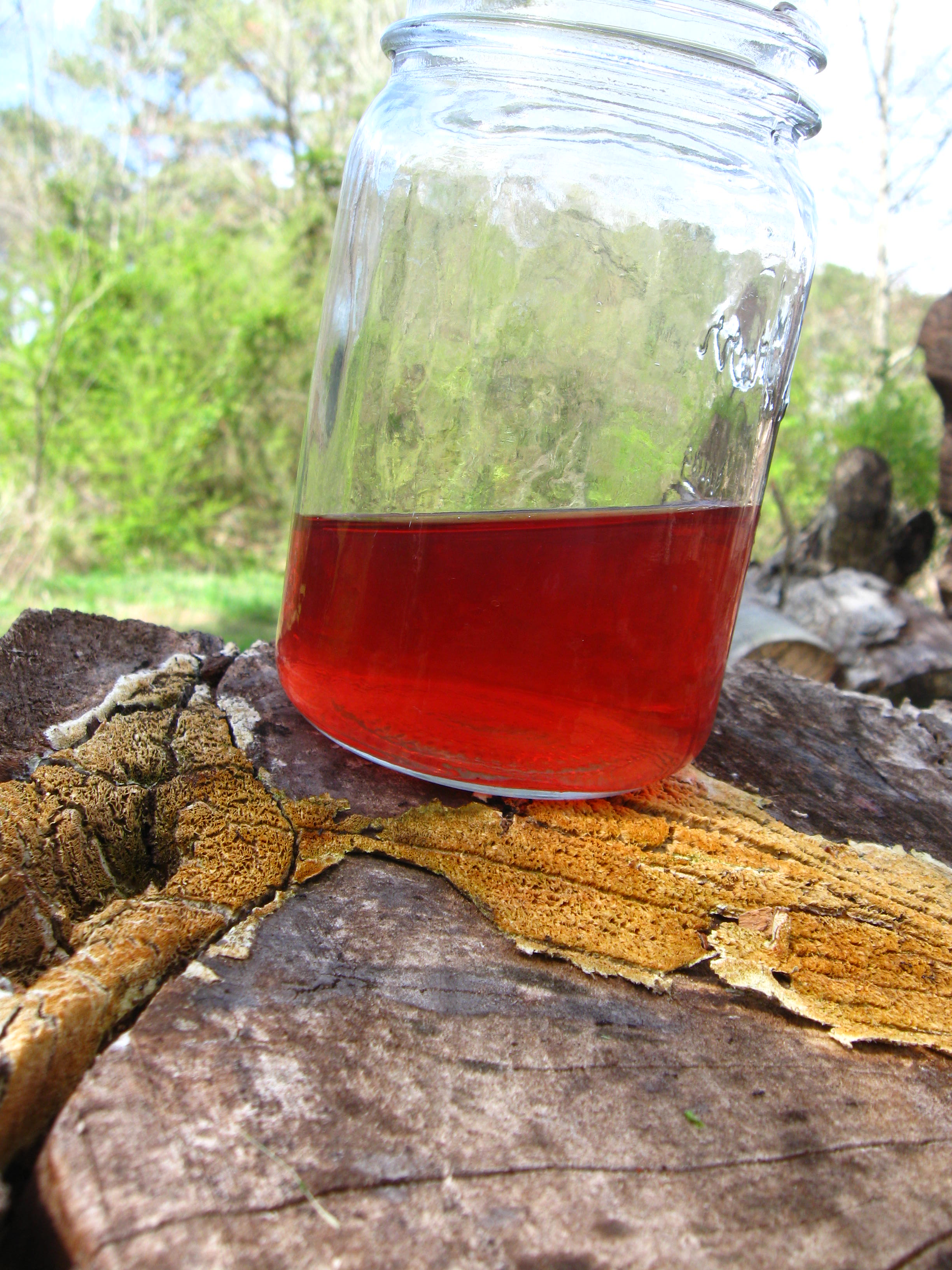 Violet oxymel is a mixture of violet infused herbal vinegar and honey.