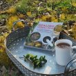 Healing Herbal Teas Book