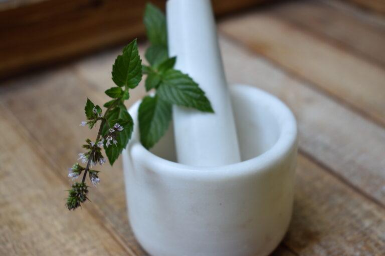 Understanding an herbal approach to fever