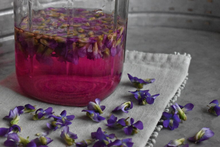 Herbal vinegar projects for home herbalists