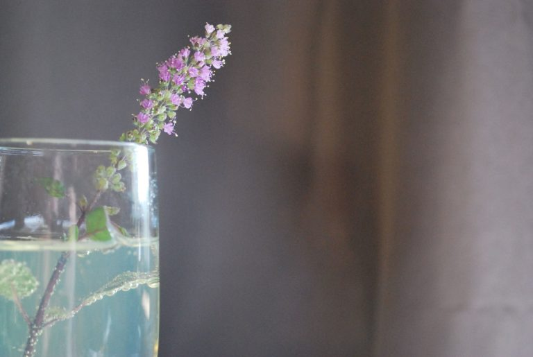 Tulsi and Lavender Sparkling Water