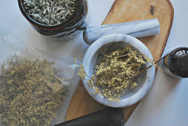 The Magic of Modern Herbalism