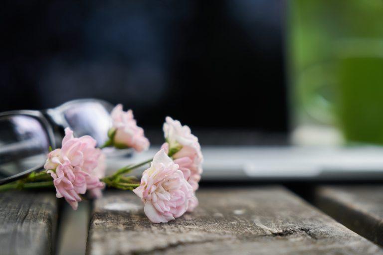 Social Media for Herbal Bloggers