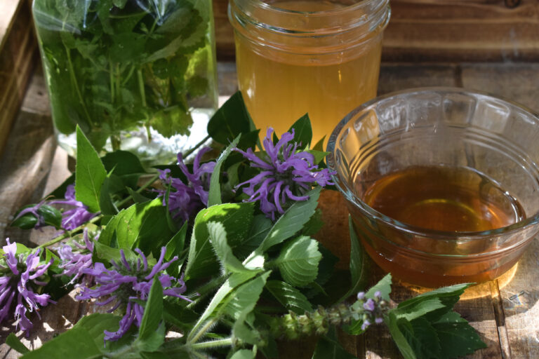 Alcohol Free Herbs for the Home Apothecary