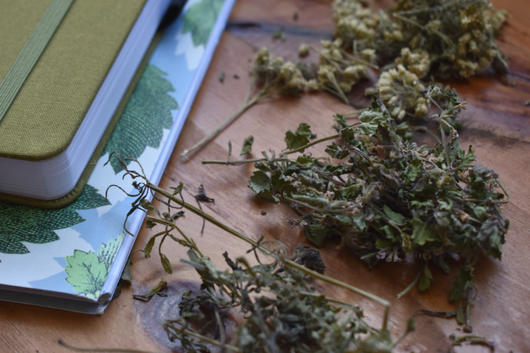 How to Tell the Quality of Dried Herbs