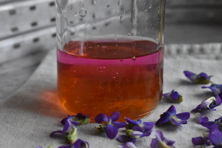 Learn to make a violet oxymel with springtime flowers